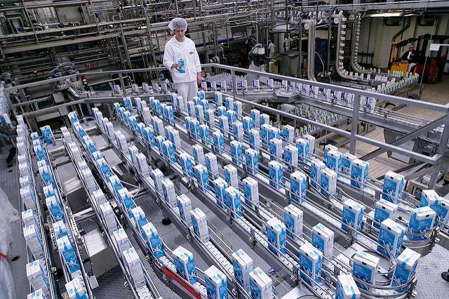 Milchproduktion (Sommerfest-Ideen)