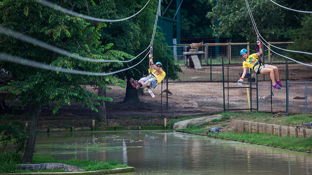 Seilrutsche (Sommerfest-Ideen)